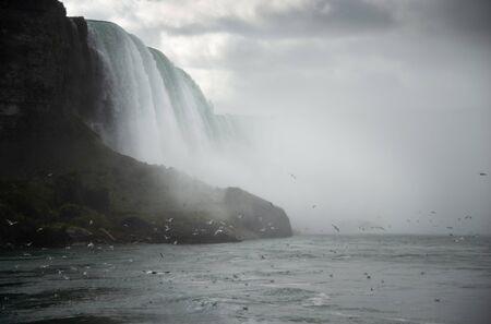 Seagulls flying along the thundering Niagara Falls