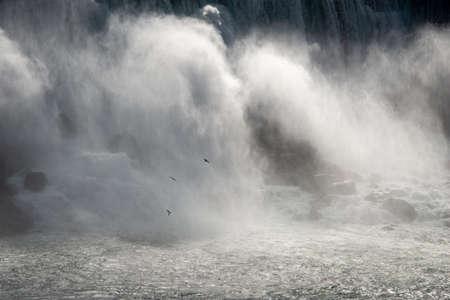 Birds flying over the roaring Niagara Falls Stock Photo