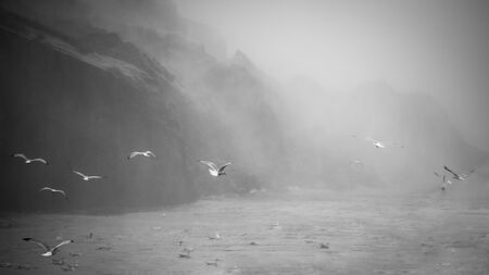 Black and White image of birds flying over the roaring Niagara Falls Stock Photo