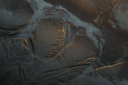 Tide goes out and leaves a beautiful tributary pattern in the sand at sunrise