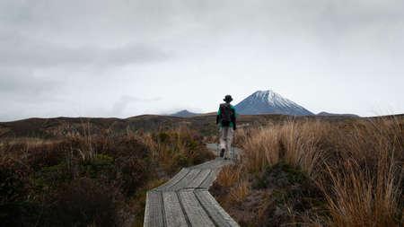 Road towards Mt Ngauruhoe in Tongariro National Park, New Zealand Imagens