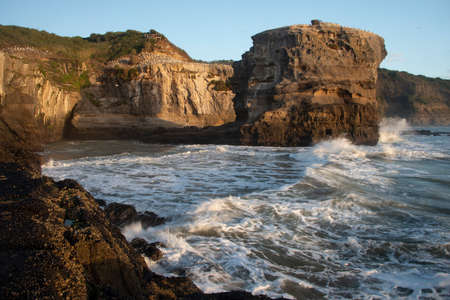 Muriwai Gannet Colony at sunset. Image taken using slow shutter speed to capture the movement of the waves crashing onto the cliffs.