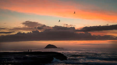 Beautiful sunset at Muriwai beach with people fishing and gannets flying overhead