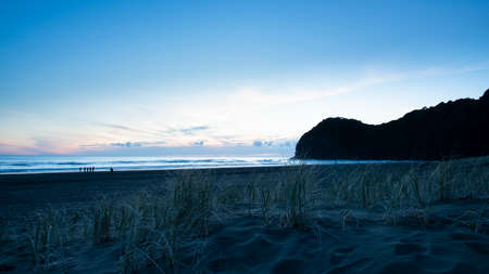 Sunset view of Piha beach with grass on the blank sand dunes