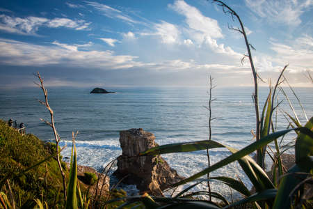 Muriwai Gannet Colony framed by tall flax stems. Tourists on the viewing platform watching the sunset Imagens