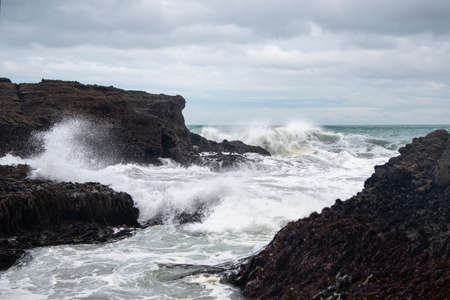 Huge waves crashing against the rocks at Piha beach, Waitakere, New Zealand