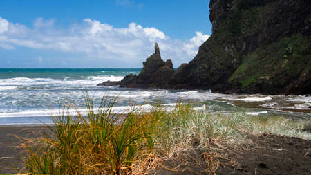 Rocks and grass on the Piga beach, Waitakere, Auckland