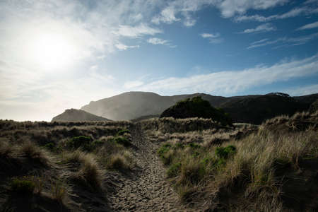 Anawhata beach in winter with afternoon sun on the sky, Waitakere regional park, Auckland