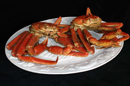 Two crab on a white platter with black background Stock Photo