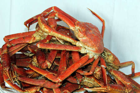 A pile of steamed crab with white background Stock Photo