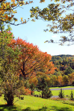 Beautiful fall landscape with pretty fall colors Stock Photo