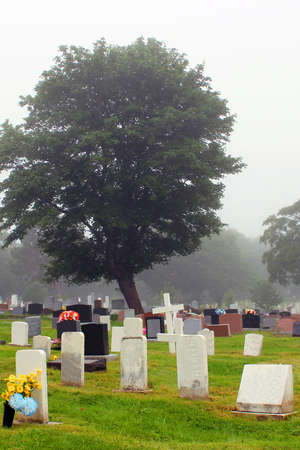 dreary: Cemetery on a foggy day Stock Photo