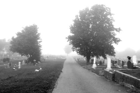 Cemetery - Black and White