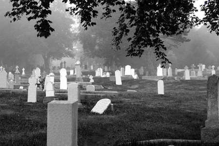 dreary: Cemetery - Black and White
