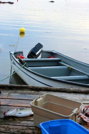 codfish: Speedboat and codfish