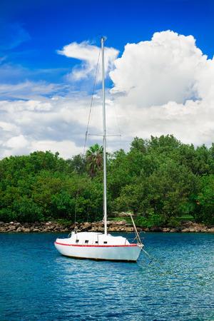 sailfish: sailfish yacht near scenic green island