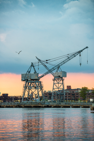 View of the city industrial area with port cranes at sunset time.