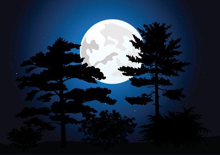 Full moon in a night wood. vector illustration Vector