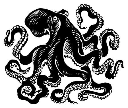 poulpe illustration vectorielle
