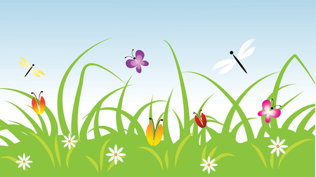 summer meadow vector illustration Vector