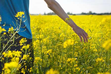 Man walking in rape field photo