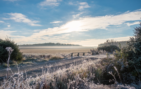 hoarfrost: Scenic and bright  landscape with sunrise at frosty autumn morning