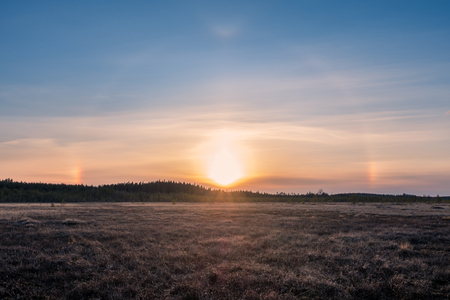 Nice halo light with sunset at spring evening in swamp Finland