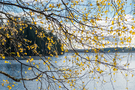 autumn colour: Autumn leaf with lake and landscape background at autumn day