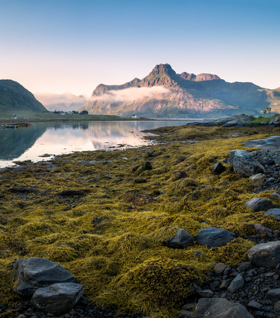 Low tide at peaceful summer evening in Lofoten, Norway