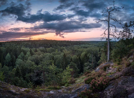 Scenic landscape with sunrise and forest at early morning in National Park Nuuksio, Finland Stock Photo