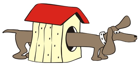 dachshund-house Stock Vector - 21297498