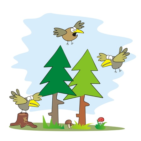 birds and forest Illustration