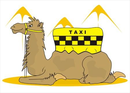wasteland: camel taxi Illustration
