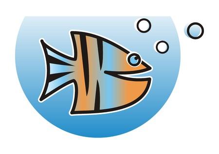 scalar: Fish Illustration
