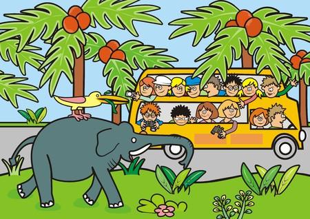 Safari Illustration
