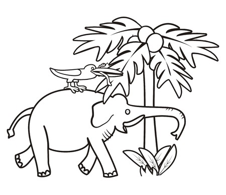 Elephant and bird - coloring book Vector