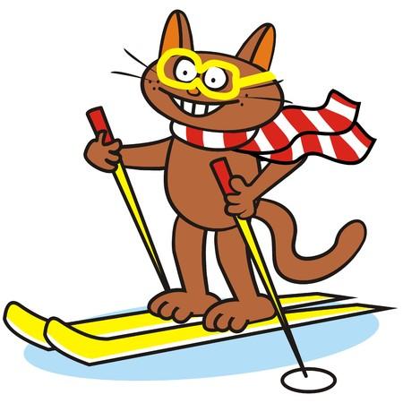 Tomcat and ski