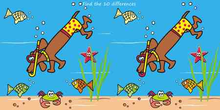 puzzlement: Dog and snorkel Illustration