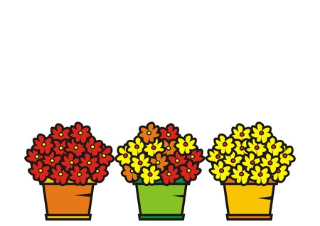 variance: colorful flowers