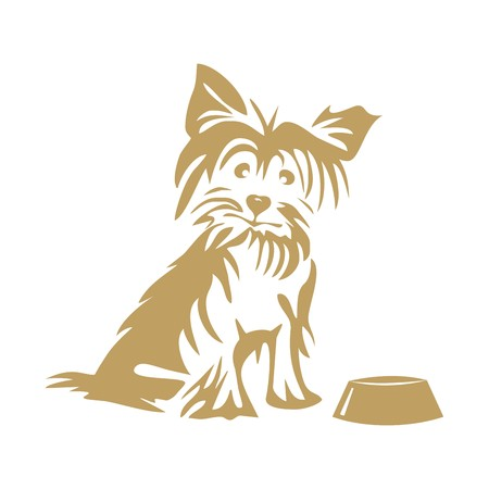 yorkshire: Yorkshire terrier and bowl Illustration