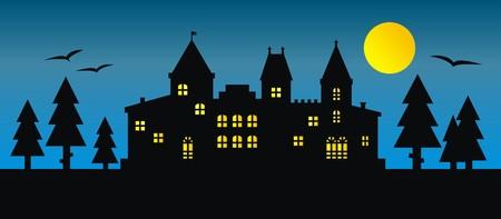 residency: castle, night landscape