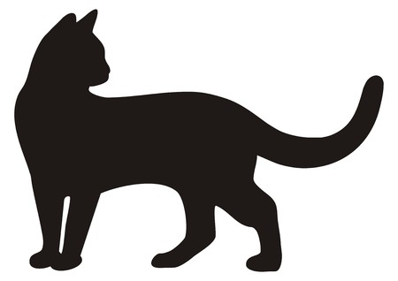 black cat, icon silhouette Çizim