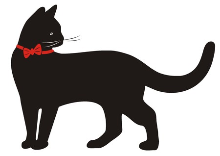 puss: black cat and red collar