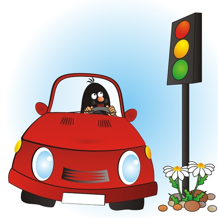Mole in red car stands at traffic light. Picture for children. Vector Illustration Keywords: