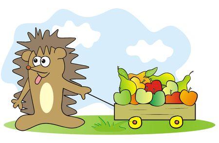 hedgehog and fruit, funny vector illustration Illustration