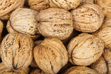 tidbit: Macro of walnuts for background Stock Photo
