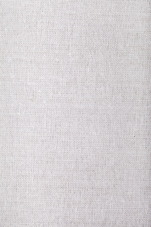 Gray canvas. Archivio Fotografico