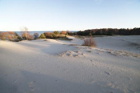 baltic: Dunes at sea.