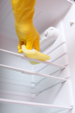 Hand cleaning refrigerator. Stock Photo