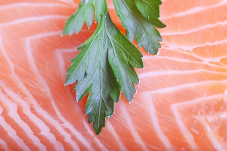 Parsley on salmon fillet. Stock Photo - 11737897